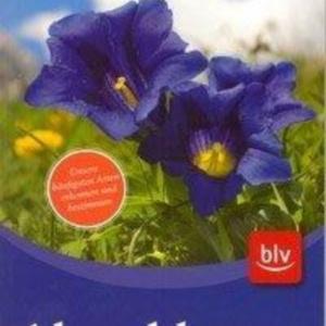 Titel: Alpenblumen